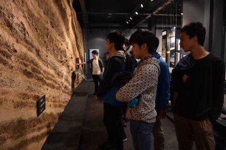 博物館 地層